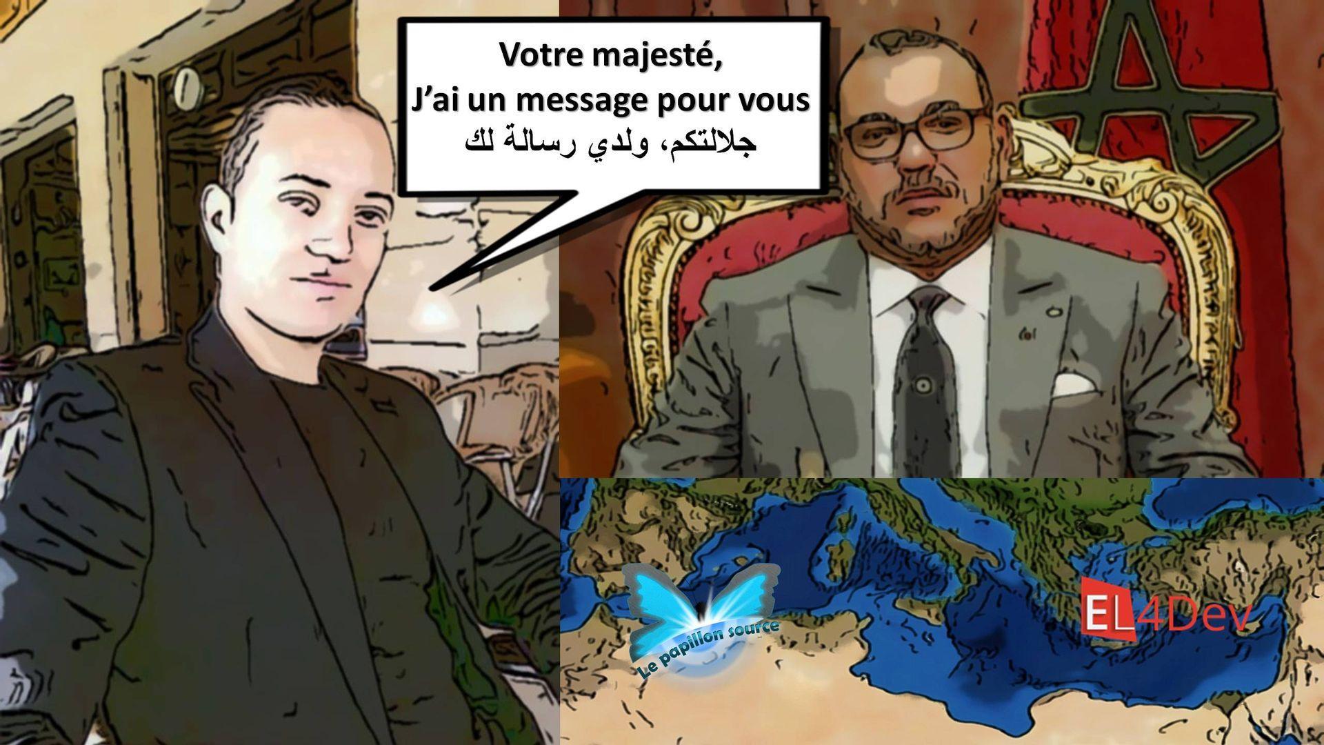 1 paul elvere valerien delsart le papillon source mediterranee el4dev message pour mohammed vi maroc resultat